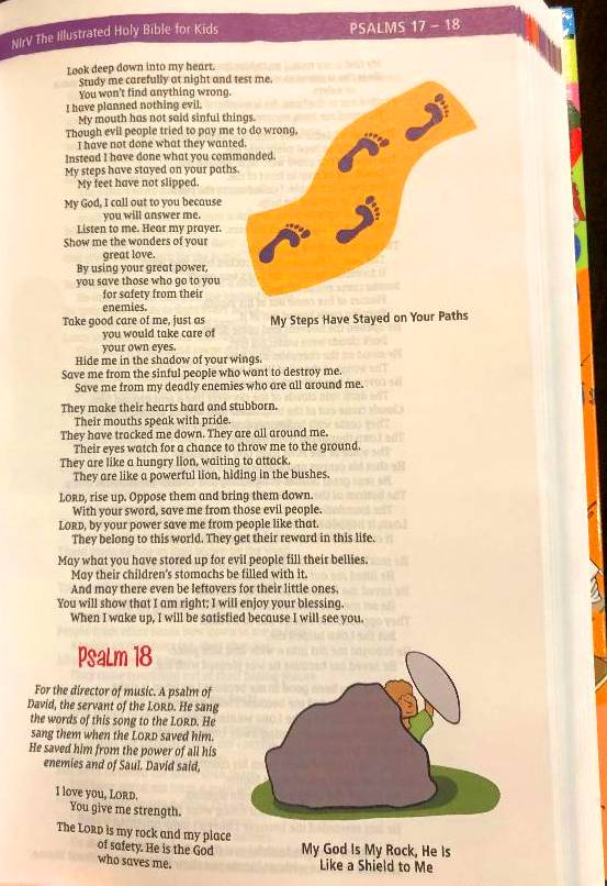 Nirv Illustrated Holy Bible For Kids From Zondervan Walking With Jesus