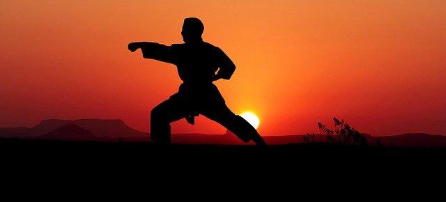 ricardo teixeira worldwide champion of karate