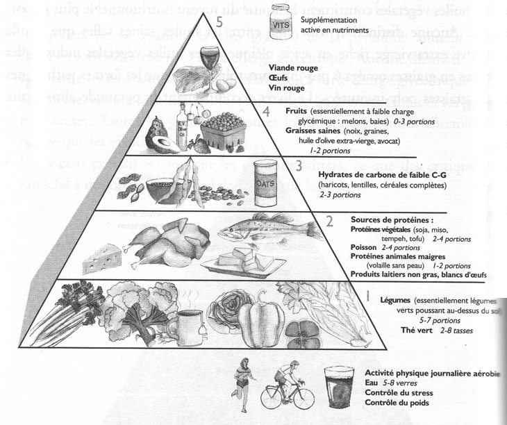 Ray and Terry's food pyramid