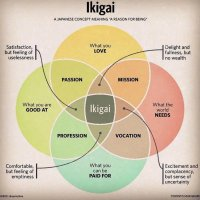 The little book of ikigai: The Japanese method to find meaning in one's life