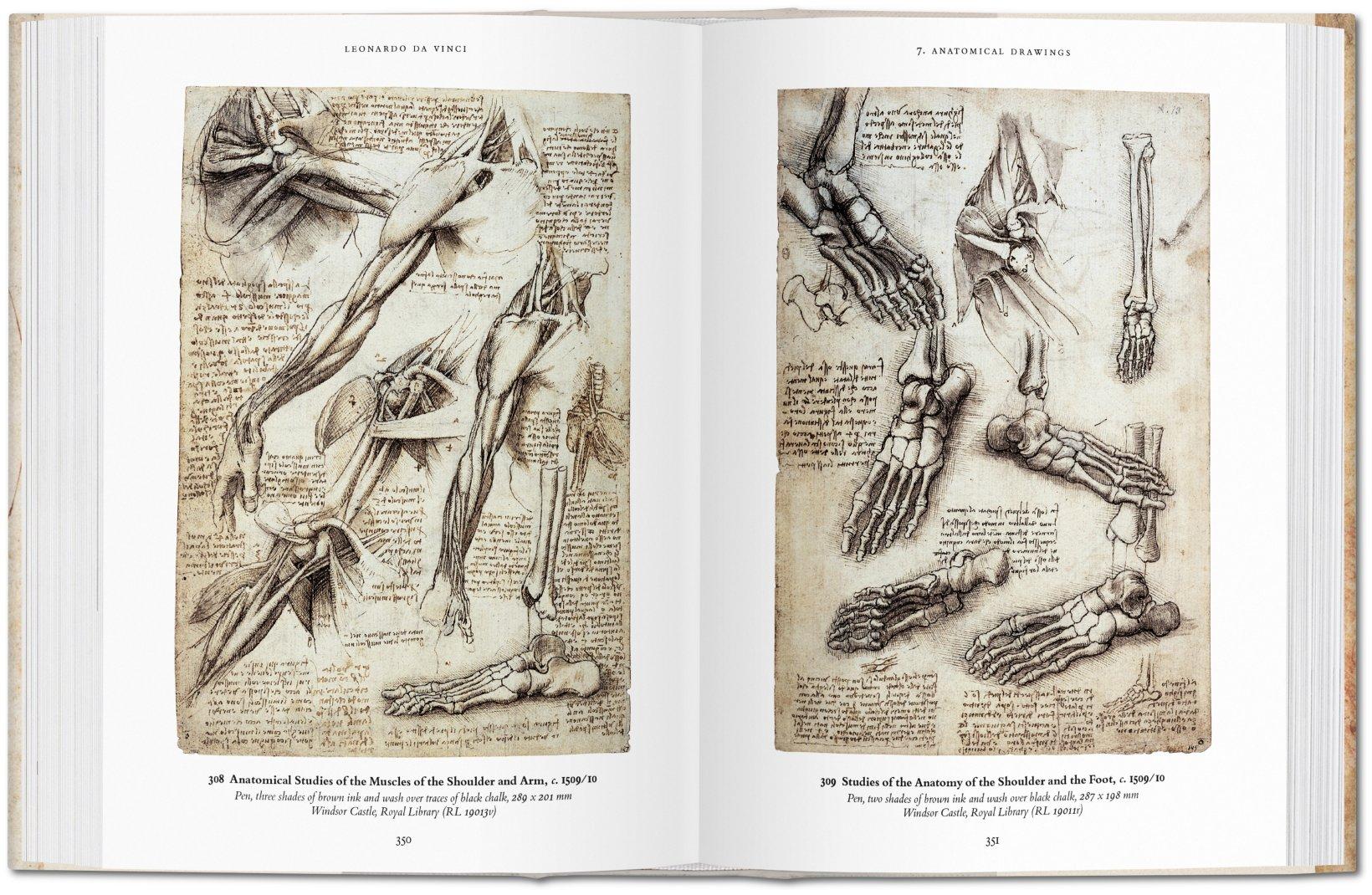 Scoop Review Of Books Leonardo