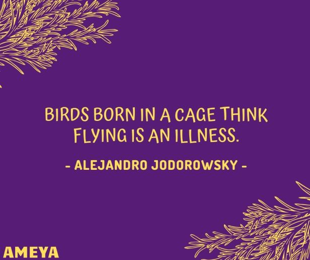 Birds born in a cage think flying is an illness. – Alejandro Jodorowsky