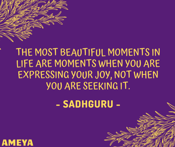 The most beautiful moments in life are moments when you are expressing your joy, not when you are seeking it. - Jaggi Vasudev (Sadhguru)