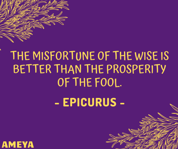 The misfortune of the wise is better than the prosperity of the fool. – Epicurus