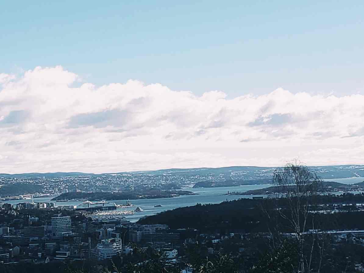 Visit Flam Fjord Cruise