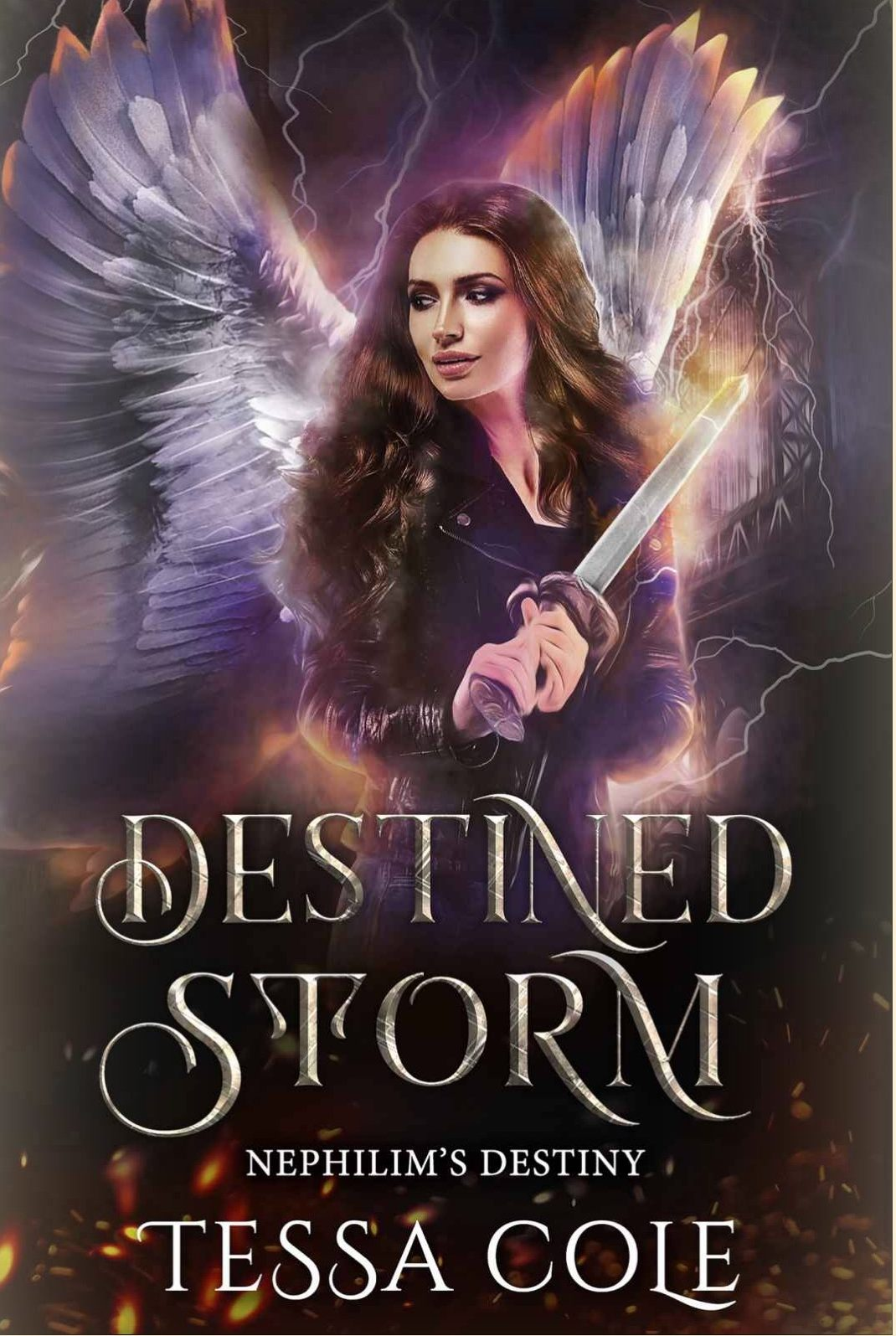 Destined Storm by Tessa Cole – A Book Review