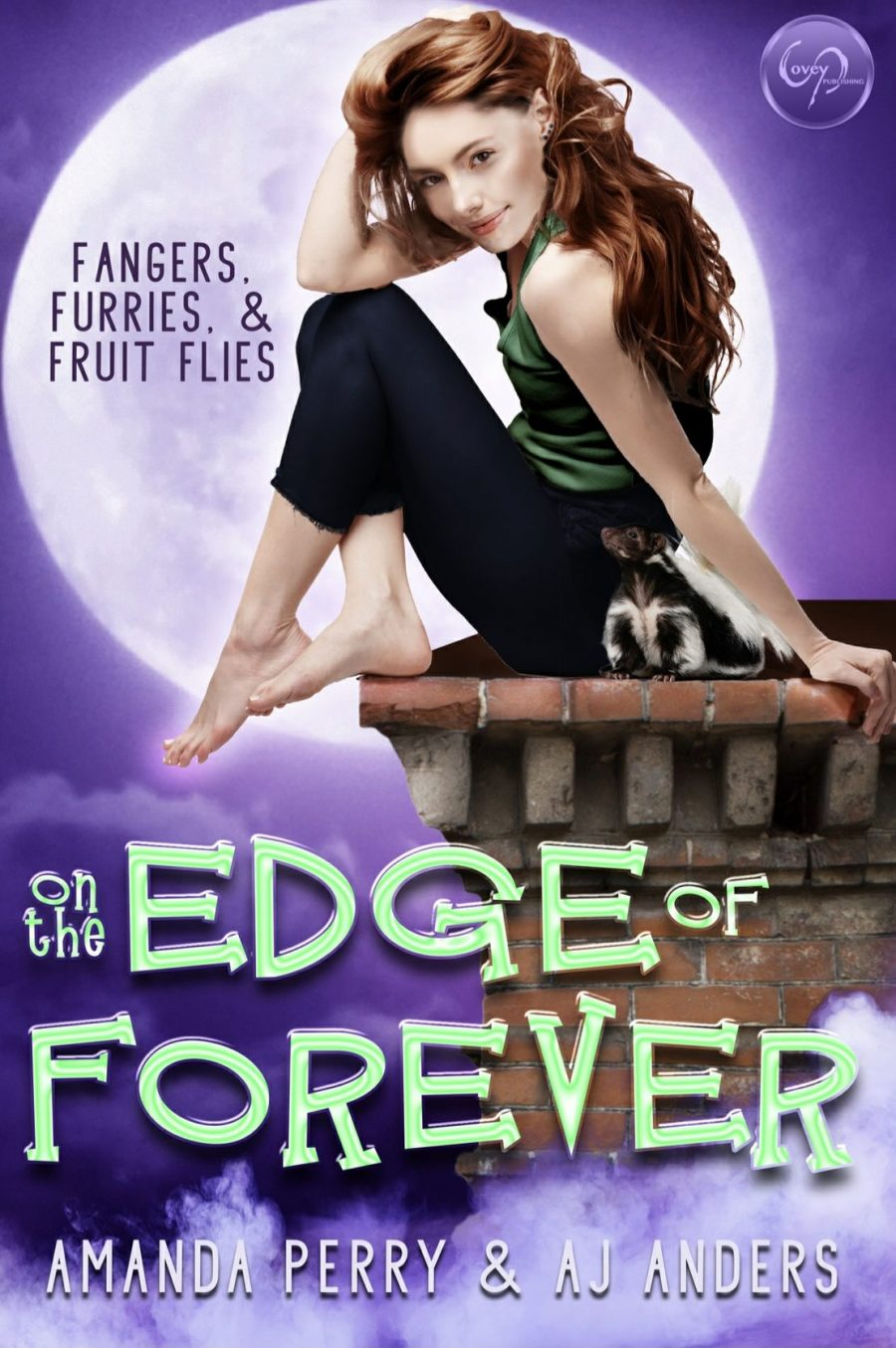 On the Edge of Forever by Amanda Perry and AJ Anders - A Book Review #BookReview #BookBlogger #Slowburn #Whychoose #RH #Funny