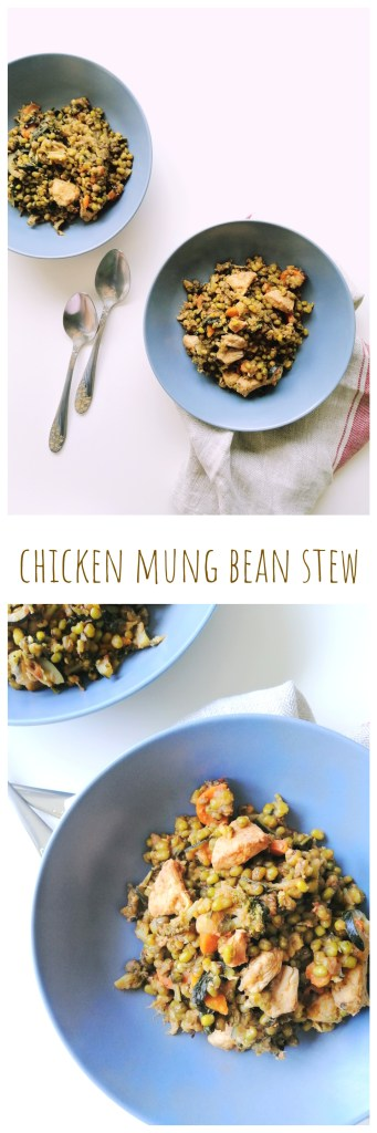 Chicken Mung Bean Stew | booksandlavender.com
