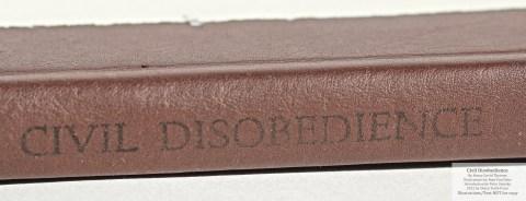 Civil Disobedience, Sharp Teeth Press, Macro of Spine