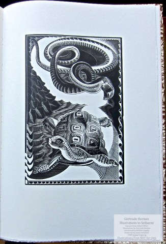 Gertrude Hermes 'Gregynog' Selborne, Gwasg Gregynog, Sample Illustration #6