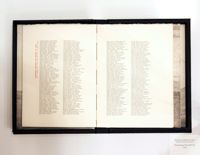 Memory and Landscape, Craft Press Chile, Sample Text (Names)