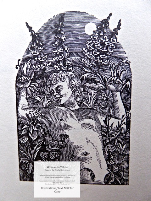 Woman In White, Poems by Emily Dickinson, The Folio Society, Sample Illustration #1