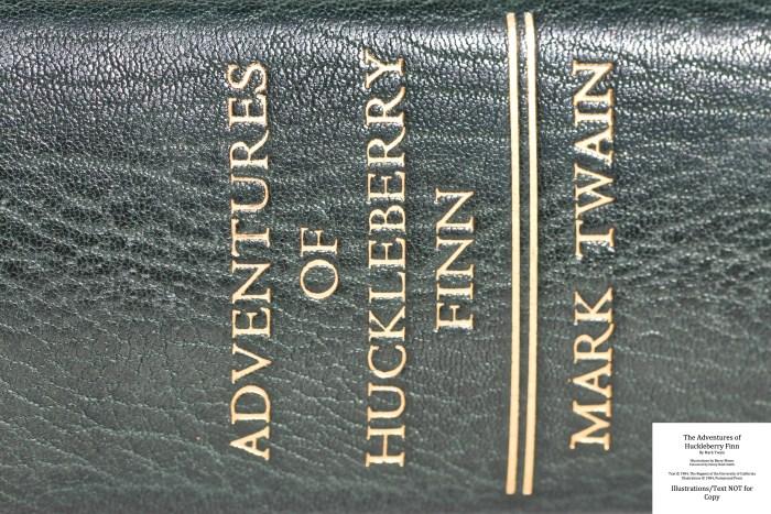The Adventures of Huckleberry Finn, Pennyroyal Press, Macro of Spine