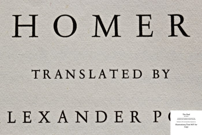 The Iliad, Limited Editions Club, Macro of Title Page