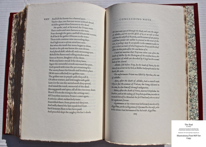 The Iliad, Limited Editions Club, Sample Text #5