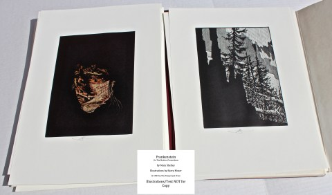Frankenstein, Pennyroyal Press, Sample from Portfolio of Prints