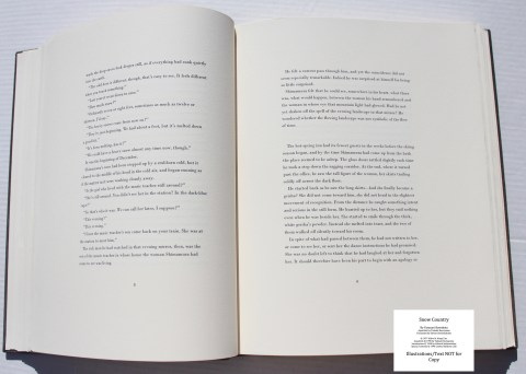 Snow Country, Limited Editions Club, Sample Text #3