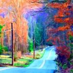 Fall Morning  - Eric Douglass