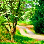 To The Orchard