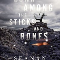 DOWN AMONG THE STICKS AND BONES by Seanan McGuire – Review