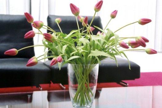 waiting room flowers