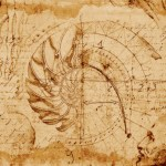 A da Vinci-like drawing showing the spiral of a nautilus shell and its relation to the Golden Mean/Golden Spiral.