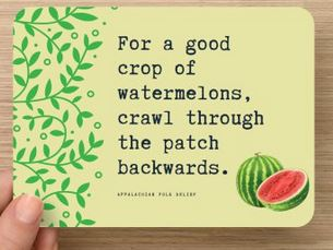 Watermelon lovers card front