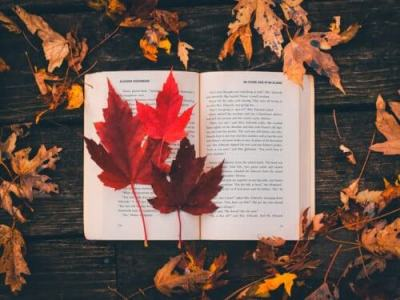 Segnalazioni letterarie di novembre Books Hunters Blog