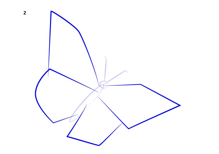 03. Как нарисовать бабочку поэтапно