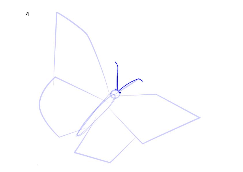 05. Как нарисовать бабочку поэтапно