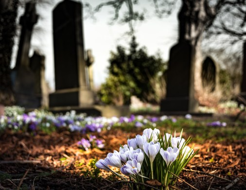 graveyard-1417871_1920