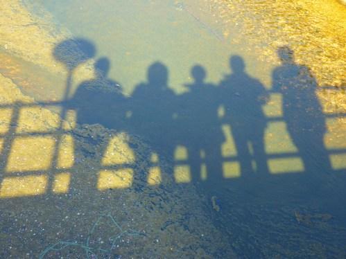 shadow-5372_1920