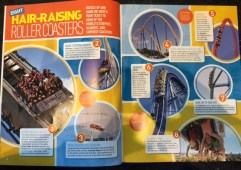 8 roller coasters
