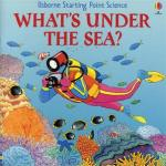 what's under the sea