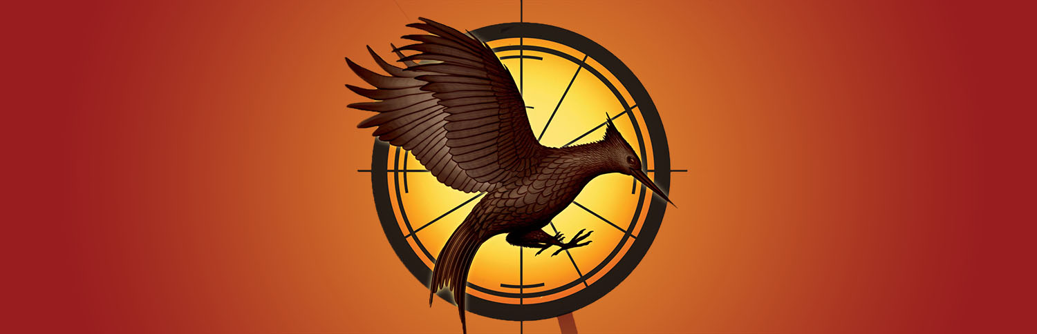Which tribute is the last that Katniss kills in the Quarter Quell?