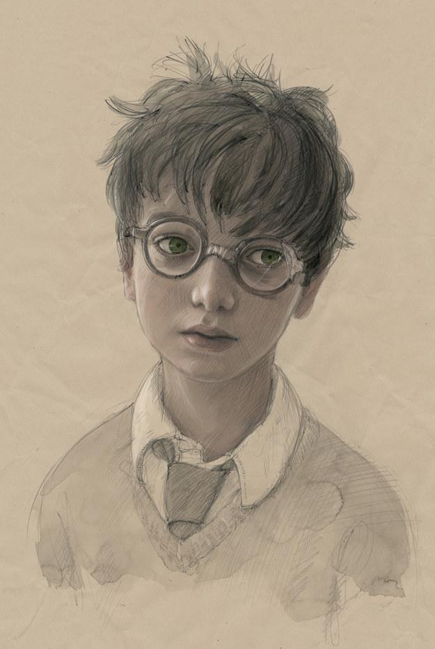 Harry Potter Illustrated Portrait