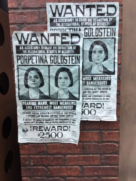 WANTED: Tina Goldstein