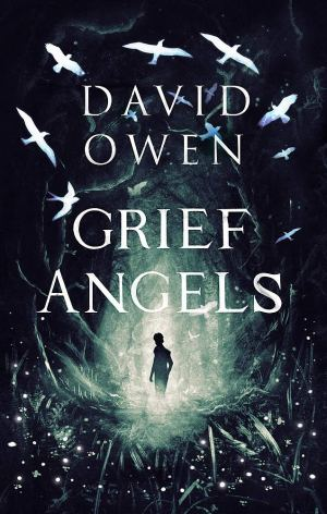 Grief Angles by David Owen