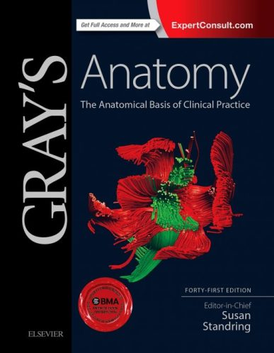 Gray's Anatomy The Anatomical Basis of Clinical Practice