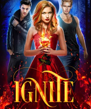 Ignite (Midnight Fire Series, Book 1) by Kaitlyn Davis