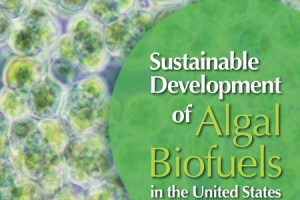 Sustainable Development of Algal Biofuels in the United States pdf