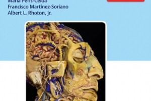Rhoton's Atlas of Head, Neck, and Brain PDF