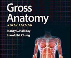 BRS Gross Anatomy 9th Edition PDF