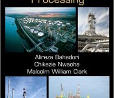 Dictionary of Oil, Gas, and Petrochemical Processing PDF
