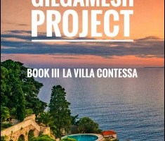 The Gilgamesh Project Book III PDF