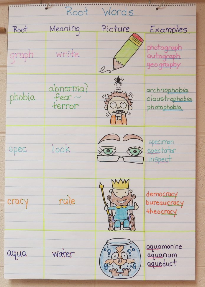 Vocabulary Root Words