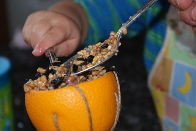 Spooning in Bird Seed