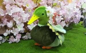 """上野駅で""""動物たち""""と""""桜"""""""