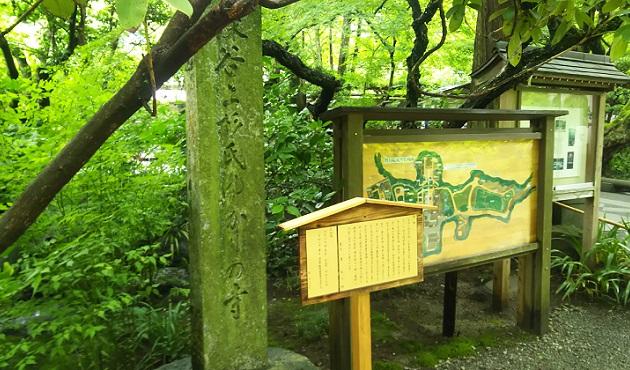 鎌倉の明月院 in 2019,07