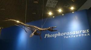 """""""フォスフォロサウルス""""  …「恐竜博2019」"""